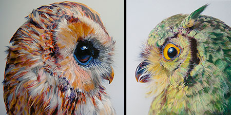 Owls by John Pusateri