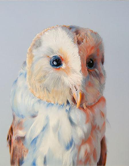 John Pusateri Owls
