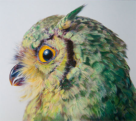 Owl Drawings by John Pusateri