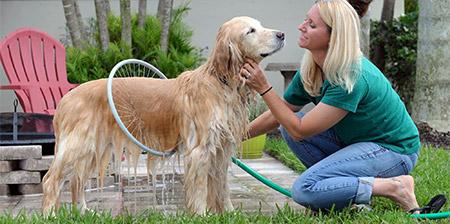 Dog Washer 360