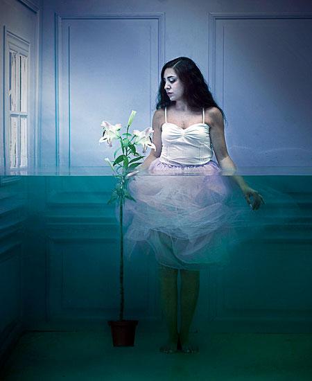 Lara Zankoul Fish Tank