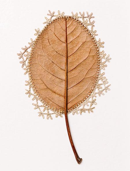 Leaf Sculpture by Susanna Bauer