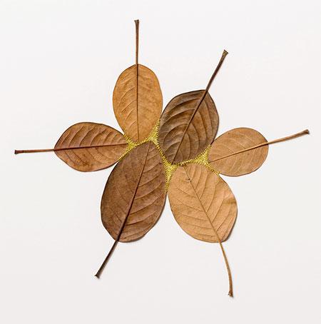 3D Leaf Sculptures