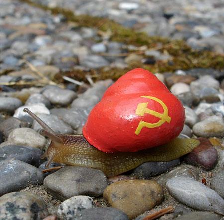 Communist Snail