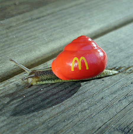 McDonalds Snail