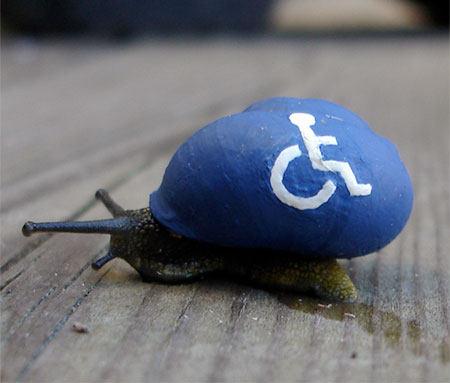 Handicap Snail
