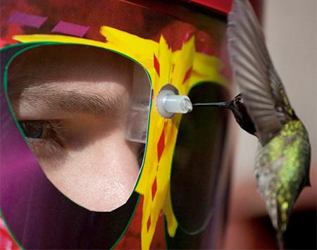 Wearable Bird Feeder