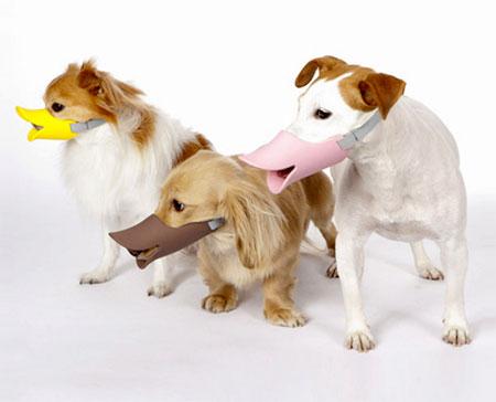Duck Bill Dog Muzzle
