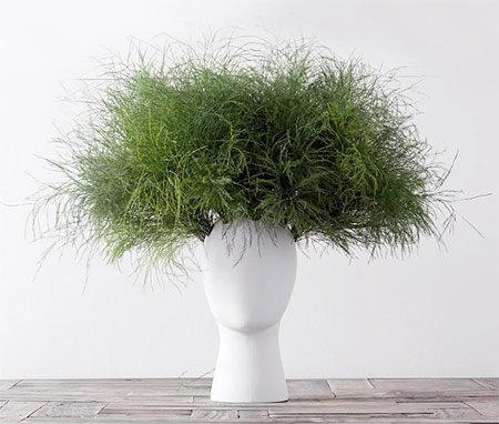 Hairstyle Vase
