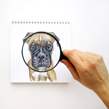Valerie Susik Interactive Illustrations