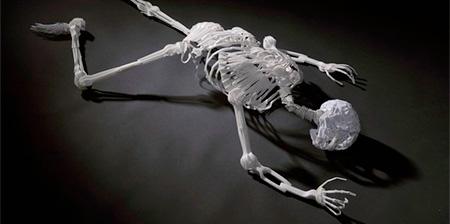Plastic Fork Skeleton