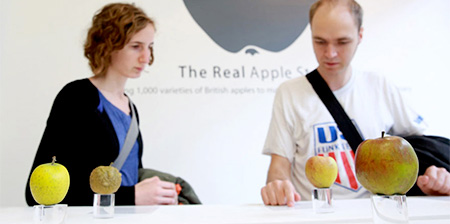 The Real Apple Store