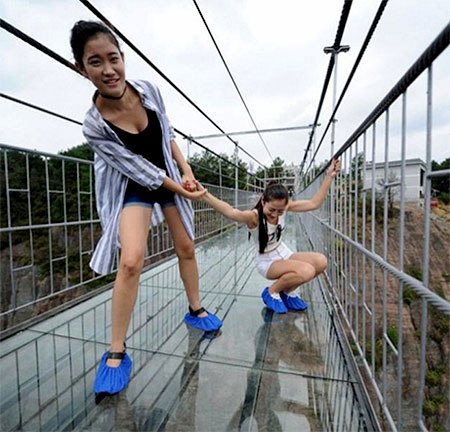 Transparent Bridge