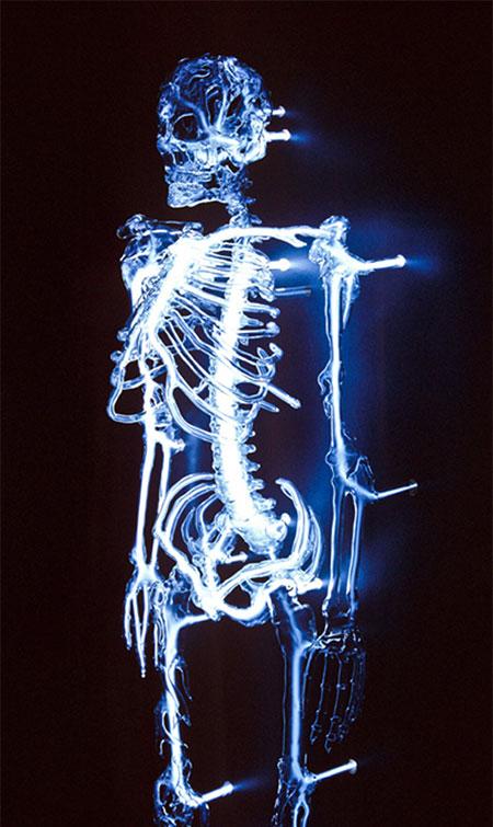 Eric Franklin Glass Skeleton
