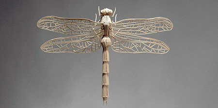 Matchstick Insects