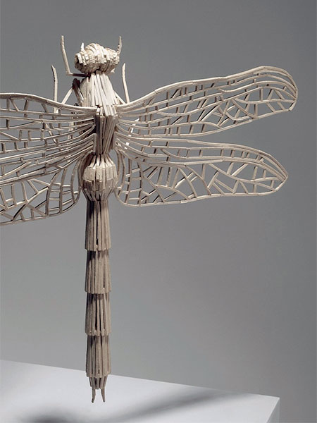 Kyle Bean Matchstick Insects