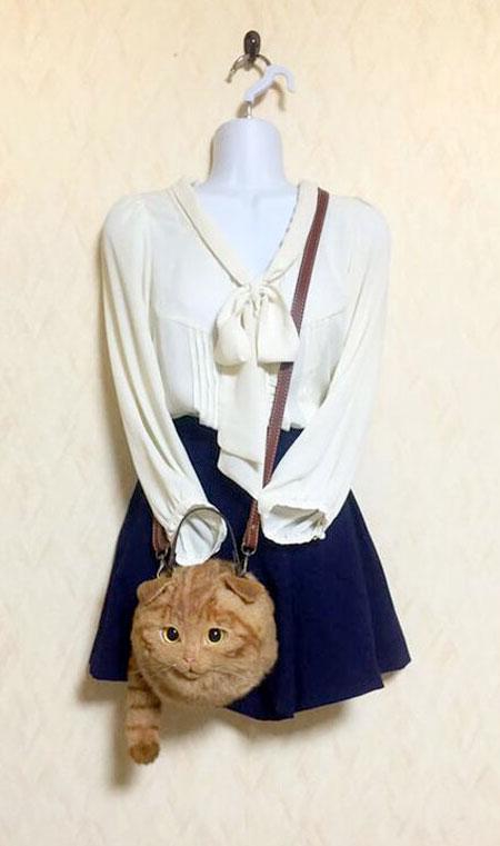 Cat Handbags