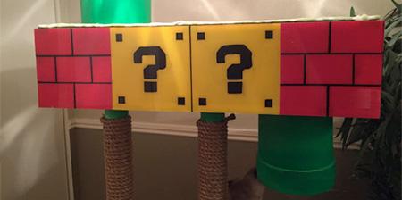 Super Mario Cat Playground