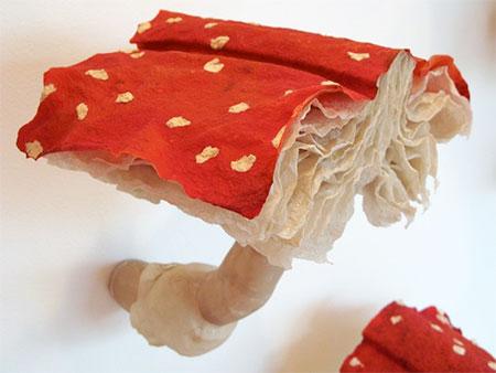 Book Mushroom