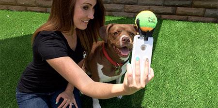 Selfie palillo para perros