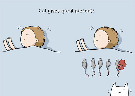 Advantages of Having a Cat