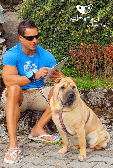 Lishinu Retractable Hands Free Dog Leash