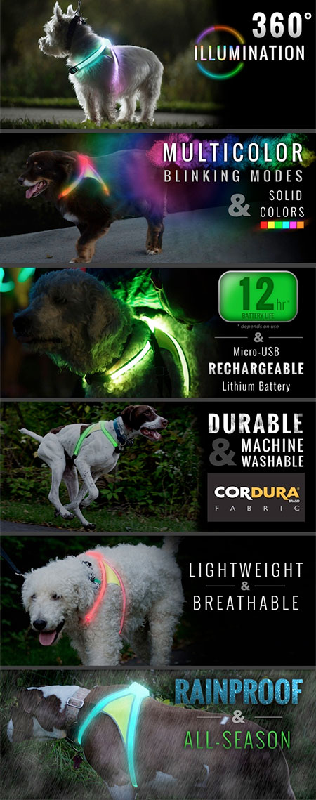 LED Light Dog Vest