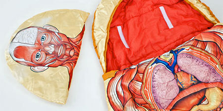 Anatomical Sleeping Bag
