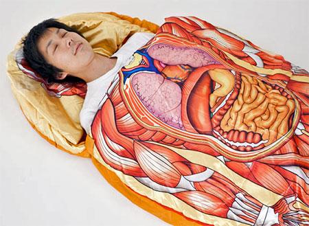 Anatomic Sleeping Bag