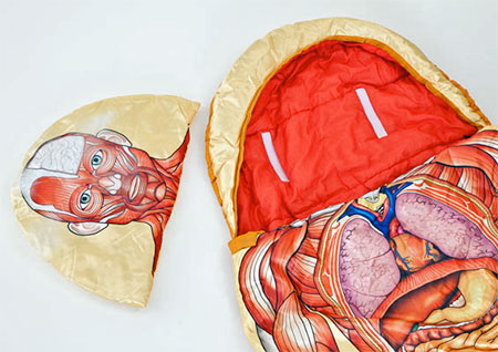 Anatomy Sleeping Bag