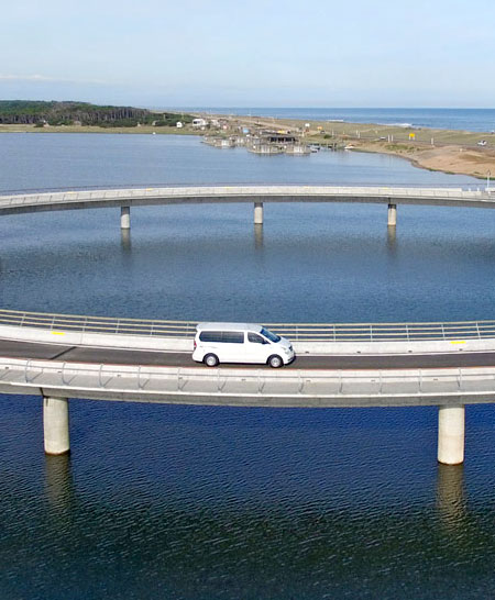 Rafael Vinoly Bridge