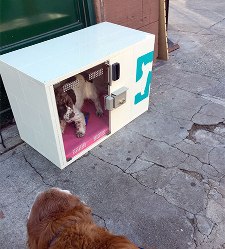Dog Parking Machine