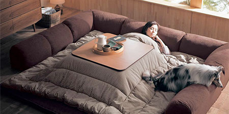 Heated Table Bed