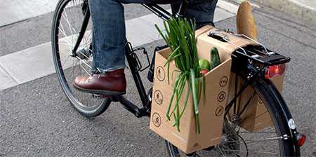 Bicycle Grocery Carrier