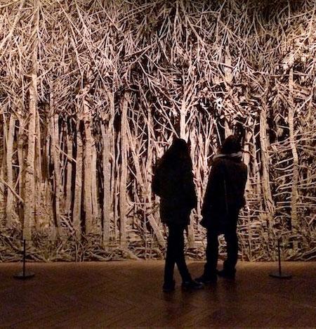 Eva Jospin Cardboard Forest