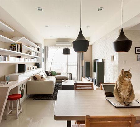 Thinking Design Cat Bookshelves