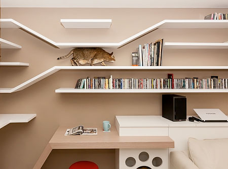 Cat Bookshelves Apartment