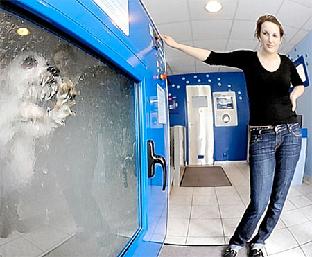 Washing Machine for Dogs