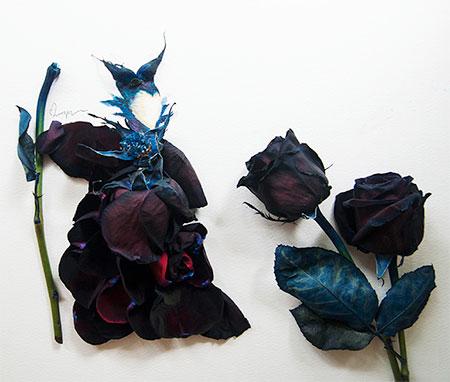 Malaysian artist Lim Zhi Wei