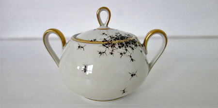Porcelain Covered with Ants