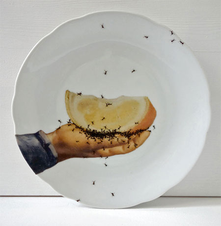 Vintage Porcelain Covered with Painted Ants