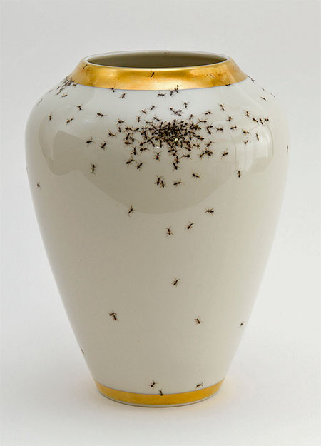 Evelyn Bracklow Porcelain Covered with Painted Ants