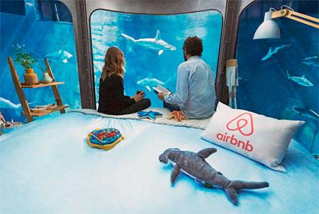 Aquarium Hotel Room