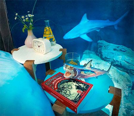 Airbnb Aquarium Hotel Room