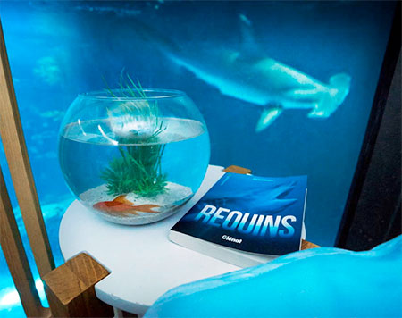 Airbnb Aquarium Room. Aquarium Bedroom