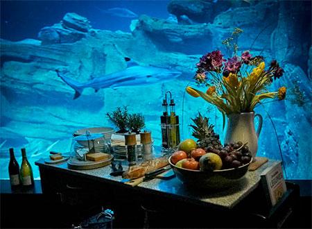 Airbnb Underwater Bedroom
