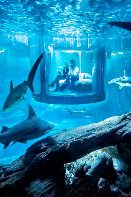 Airbnb Underwater Hotel Room