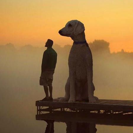 Chris Cline Giant Dog
