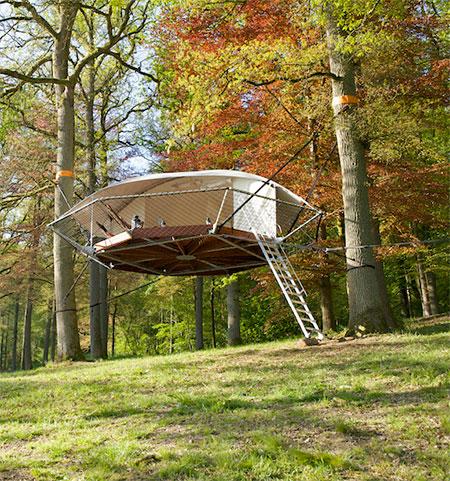 Dom Up Tree House