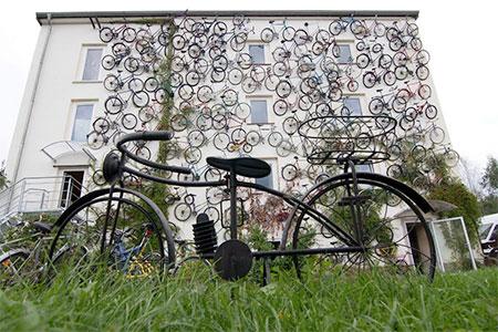 Bicycles Wall